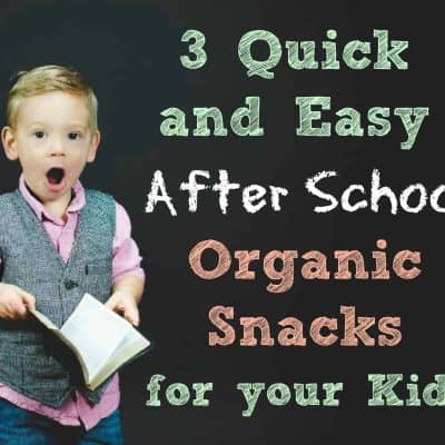 3 Quick and Easy After School Organic Snacks for Your Kids
