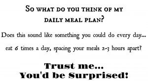 My Daily Meal Plan with Medifast Go! & How It's Been Successful for Me for the Past 30 Days