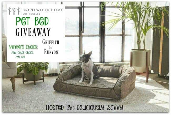 Blogger Opp: Brentwood Home Pet Bed Giveaway