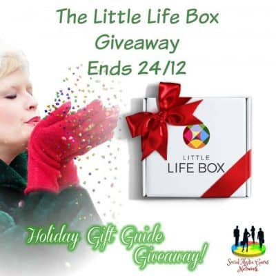 Little Life Box Giveaway