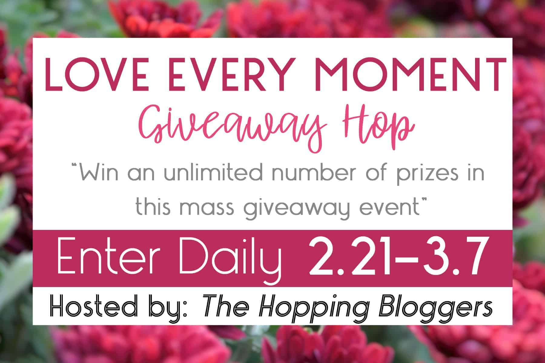 Love Every Moment Giveaway Hop 2018