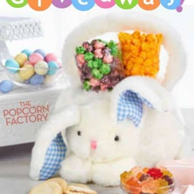 The Popcorn Factory Plush Bunny Basket Giveaway (3-Winners)