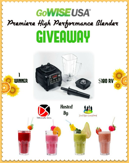GoWISE USA Premiere High Performance Blender