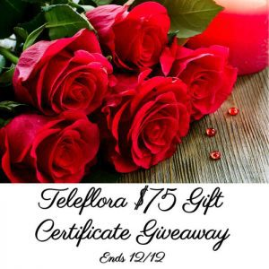 Teleflora Local Florist Holiday Plants and Flowers